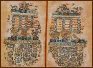 This image shows Maya animal constellations found in the Paris Codex.