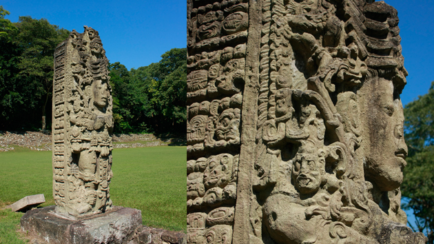 "<a href='#' class='glossary-tip' title=""A monument shaped like a column, usually monolithic, inscribed with a commemorative, funerary, or ceremonial function."">Stela</a> A, one of Copán's ""stone trees.""  The carved image is that of king 18-Rabbit, shown in spectacular regalia along with heiroglyphic texts and the <a href='#' class='glossary-tip' title=""One of the calendars of the ancient Maya, spanning cycles of 5,215 years."">Long Count</a> calendar date of 9.14.19.8.0, or 731 CE. The <a href='#' class='glossary-tip' title=""A type of rock consisting of consolidated volcanic ash ejected from vents during a volcanic eruption."">volcanic tuff</a> used to carve the sculptures allowed the Maya artists to give the figures a three dimensional quality and elaborate detail. The hieroglyphs include historical information about the rulership of 18-Rabbit.&nbsp;<span class='italic'>Photo Credit:&nbsp;Julián Cruz Cortés</span>"