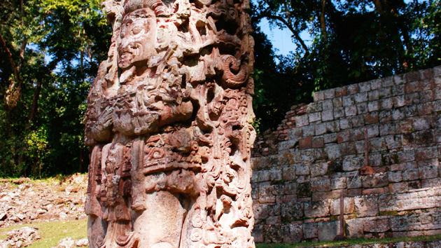 "Research by Honduran astronomers suggests that this sculpture, <a href='#' class='glossary-tip' title=""A monument shaped like a column, usually monolithic, inscribed with a commemorative, funerary, or ceremonial function."">Stela</a> D, was used by the ancient Maya as a solar clock to time rituals and celebrations. Analysis of the stela's shadows demonstrates how the Maya registered seasonal markers throughout the year.  The carved serpents represent the Sun during <a href='#' class='glossary-tip' title=""The winter solstice is when we experience the longest night and the shortest day of the year. The summer solstice is when we have the longest day and shortest night of the year."">solstices</a>, <a href='#' class='glossary-tip' title=""Equinox is the time of year when day and night are approximately 12 hours each, everywhere on Earth. It happens twice a year, on March 20th or 21st and September 22nd or 23rd."">equinoxes</a>, and <a href='#' class='glossary-tip' title=""In tropical latitudes, the moment when the Sun, in its apparent motion caused by the rotation of the Earth, passes through a point directly above the observer twice a year."">zenith passages</a>.&nbsp;<span class='italic'>Photo Credit:&nbsp;Julián Cruz Cortés</span>"