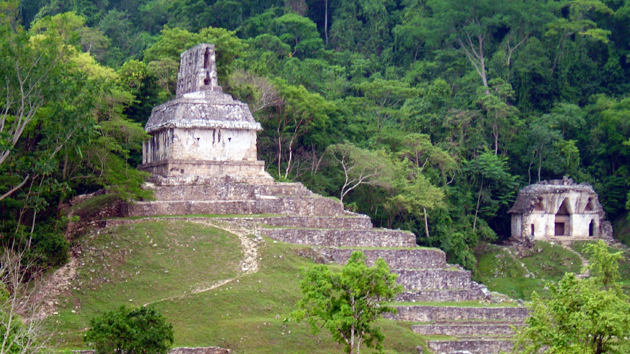 The Temple of the Cross (left) and the Temple of the Foliated Cross (background right). The Group of the Cross, composed of these two structures plus the Temple of the Sun, house inscribed stone tablets that narrate the mythological and historical timelines of Palenque.&nbsp;<span class='italic'>Photo Credit:&nbsp;Isabel Hawkins</span>