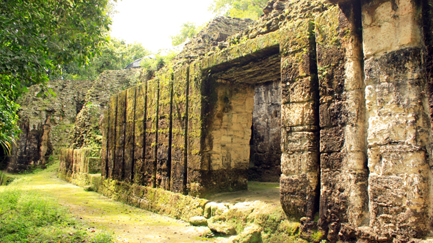 Mossy walls on a palace structure. The visible integrity of this building is a testament to the stability of the stone and mortar stuctures, many of which still retain wooden beams over a thousand years old.&nbsp;<span class='italic'>Photo Credit:&nbsp;Julián Cruz Cortés</span>