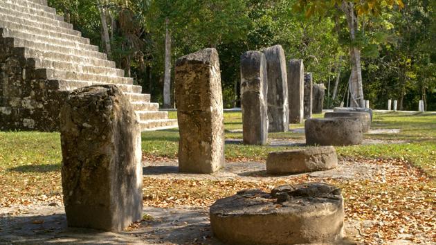 """La combinación de <a href='#' class='glossary-tip' title=""""Un monumento en forma de columna, generalmente monolítico y con inscripciones y función conmemorativa, funeraria, o ceremonial."""">estelas</a> y altares es típico en las <a href='#' class='glossary-tip' title=""""Zona geográfica que abarca la Península de Yucatán y la zona oriental de Guatemala, que ha sido poblada por los mayas por miles de años."""">tierras bajas</a> de los antiguos yacimientos mayas. En estas estructuras, los gobernantes documentaron ceremonias a intervalos de 20 años.&nbsp;<span class='italic'>Crédito de imagen:&nbsp;Istock: Ralf Broskvar</span>"""