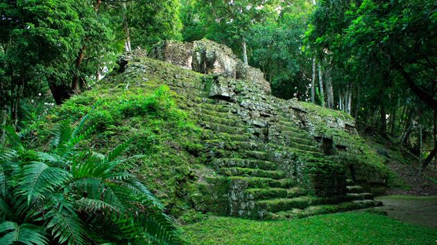 Follaje verde y musgo cubren los antiguos edificios. Abandonados por casi 1.200 años, muchas de las estructuras están en excelentes condiciones, dando a esta ciudad la apariencia de que uno se está adentrando a un antiguo pasado.&nbsp;<span class='italic'>Crédito de imagen:&nbsp;Julián Cruz Cortés</span>